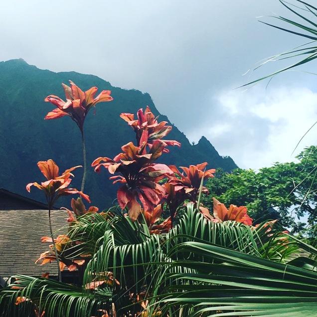 Kanoehe, Hawai'i